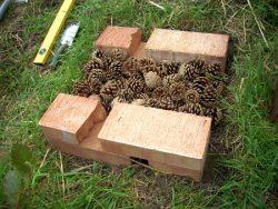Prízemie z borovicových šušiek určené pre chrobač