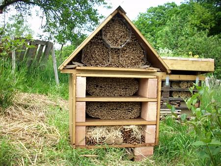 Moje kamarátky včielky 3